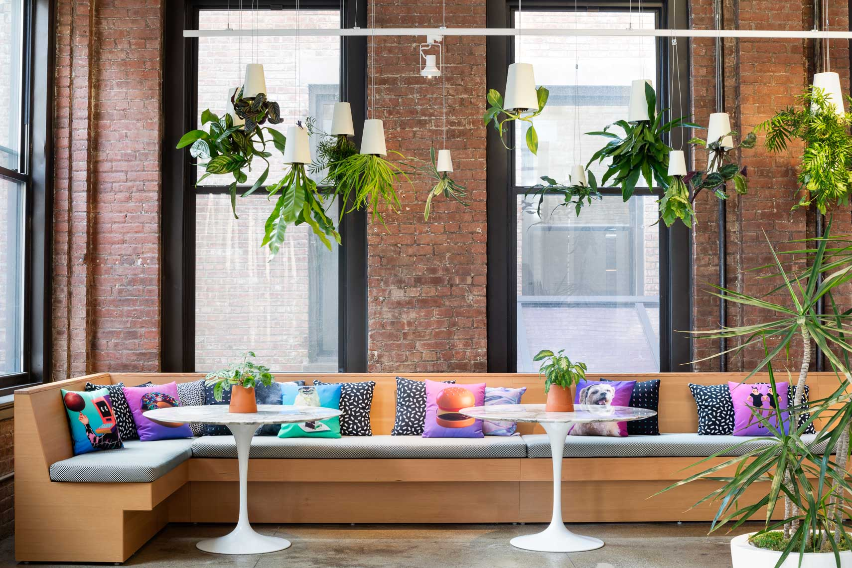 Trendy colorful bench seating with hanging upside down planters
